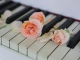 La vie en rose custom accompaniment track - Diana Krall