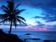 Instrumental MP3 Blue Hawaii - Karaoke MP3 bekannt durch Andy Williams