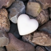Karaoké Love On The Rocks Neil Diamond