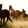 Karaoké Wild Horses Garth Brooks