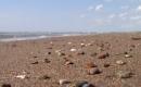 Karaoke de Les vacances au bord de la mer - Michel Jonasz - MP3 instrumental