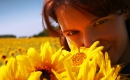 Sunflower - Instrumental MP3 Karaoke - Glen Campbell