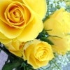 18 Yellow Roses Karaoke Marty Robbins
