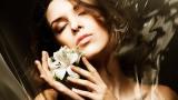 MP3 instrumental de Flor pálida - Canción de karaoke