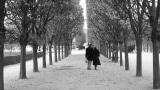 Love Is a Many-Splendored Thing kustomoitu tausta - Andy Williams