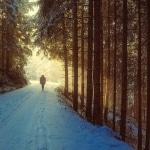 Karaoké Lost in the Woods Frozen 2