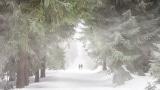 The Next Right Thing niestandardowy podkład - Frozen 2