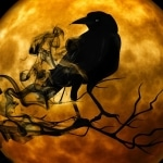 The Crow & The Butterfly Karaoke Shinedown