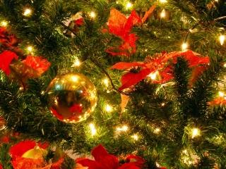 Joy To The World Free Mp3 Instrumental Christmas Carol Karaoke Version