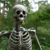 Karaoké Bones The Killers