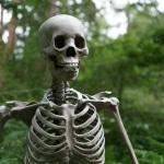 Bones Karaoke The Killers